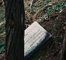 Died Salt Lake City by sillumgungfu