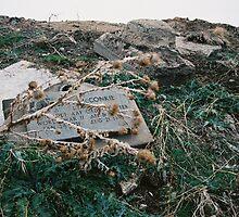 Fallen Vet by sillumgungfu