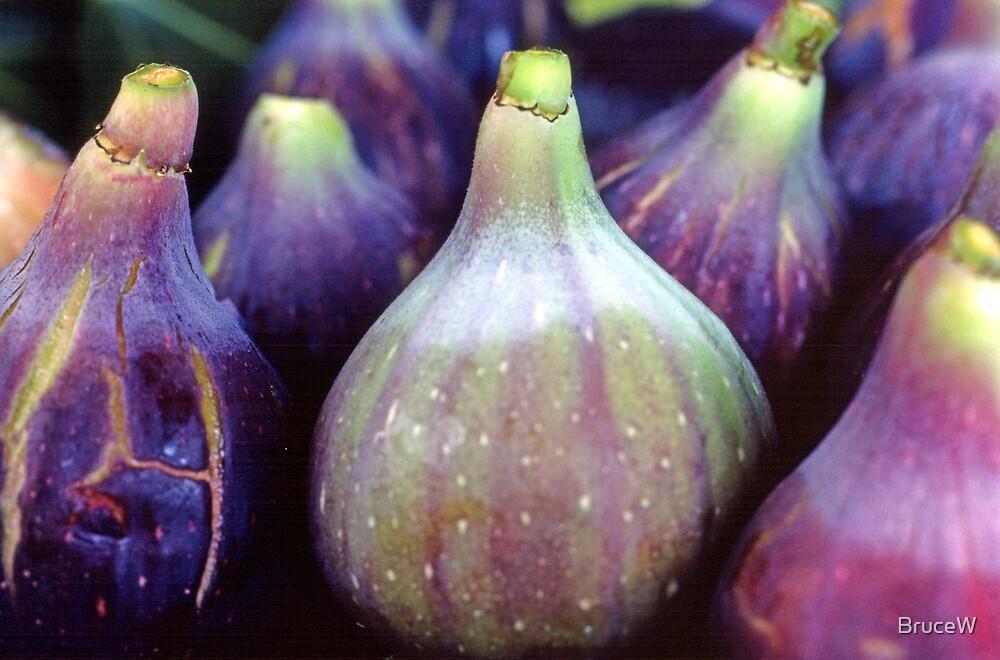 Black Figs by BruceW