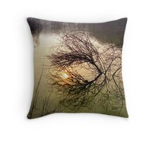Beauty of Acceptence Throw Pillow