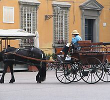 Getting around in carless Lucca by RosemaryO