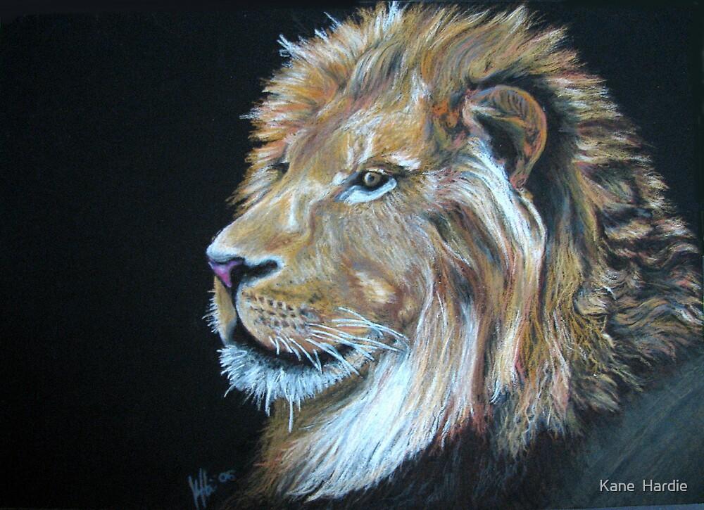 The King of Beasts by Kane  Hardie
