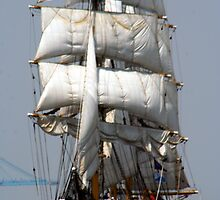 Gorch Fock by Richard  Bianco