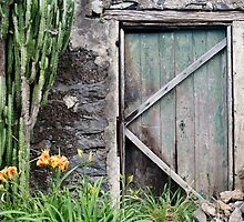 Ye Old Door by Walter Quirtmair