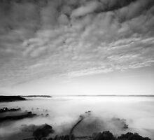 Sea of Fog by Anne Gilbert