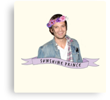 Stan - Sunshine Prince Canvas Print