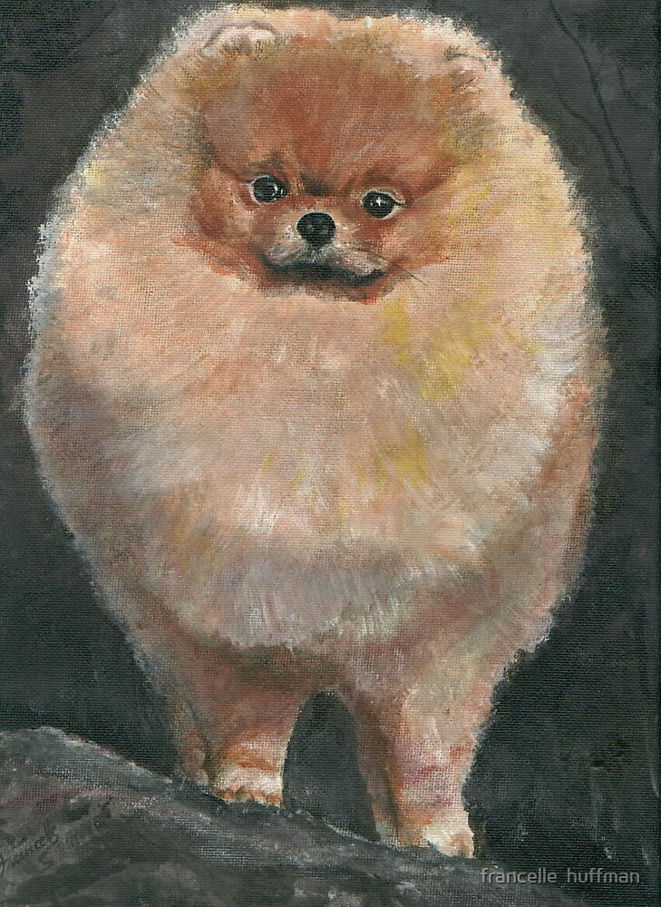 PAINTING OF POMERANIAN by francelle  huffman