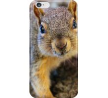 How many peanuts do you have lady? iPhone Case/Skin