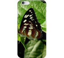 Butterfly    ^ iPhone Case/Skin