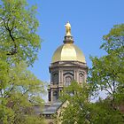 Golden Dome Through the Trees-Notre Dame by 313 Photography