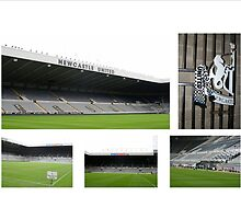 Newcastle - St James' Park by footypix