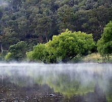 Macalister River by Michael Eyssens