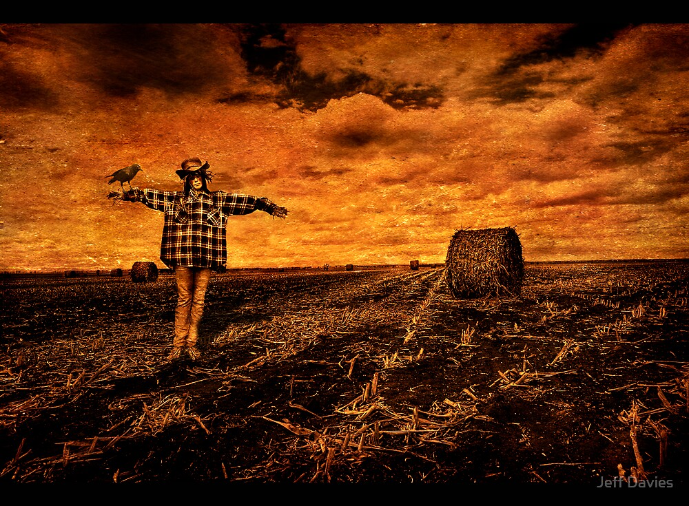 Scarecrow in a field by Jeff Davies