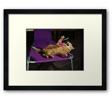Ginger cat playing with toy mouse Framed Print