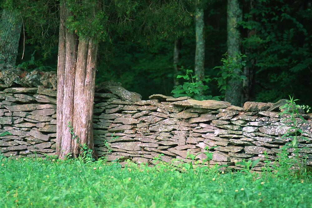 My Friend's Wall by cewoodruff