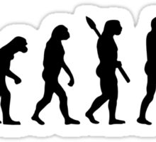 Evolution Cello Sticker