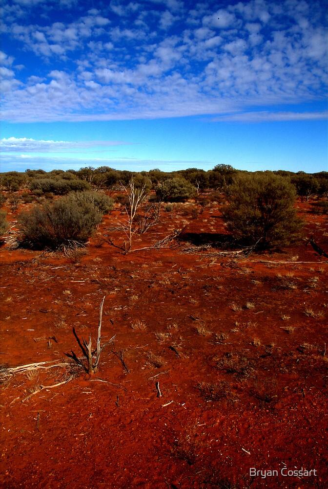 Desert Setting by Bryan Cossart