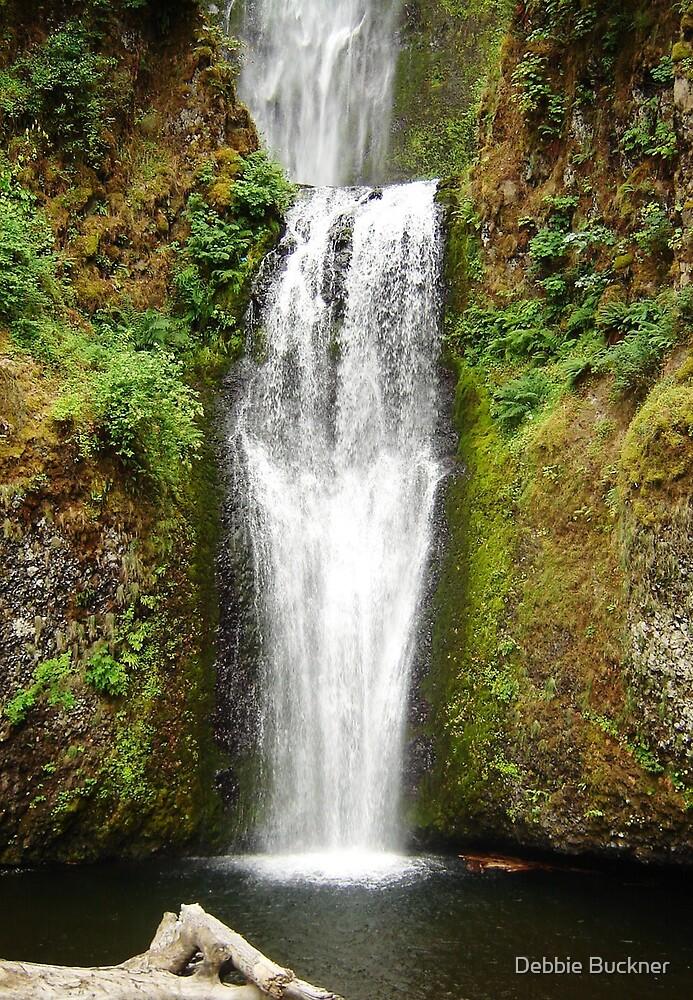 OR Waterfall 1 by Debbie Buckner