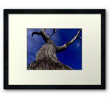 Habitat tree Framed Print