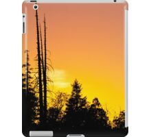 Tequila Sunset iPad Case/Skin