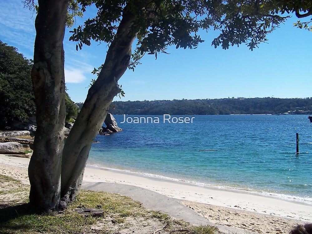 The beach by Joanna Roser