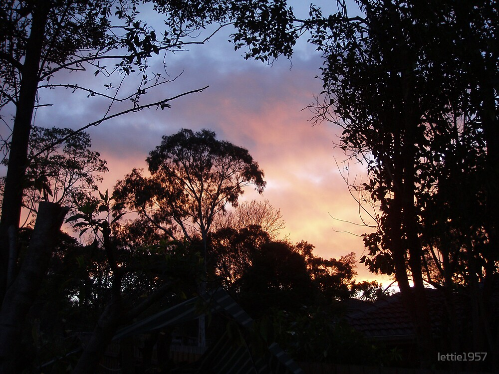 Sunset from our backyard  by lettie1957