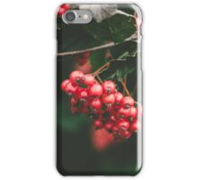 Winterberries iPhone Case/Skin