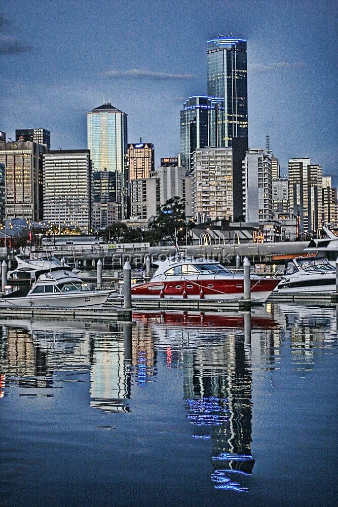 Melbourne Series - River Reflections by sparrowhawk