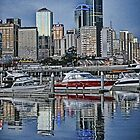 Melbourne/Sydney by sparrowhawk