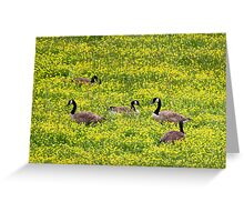 Springtime Gathering Greeting Card