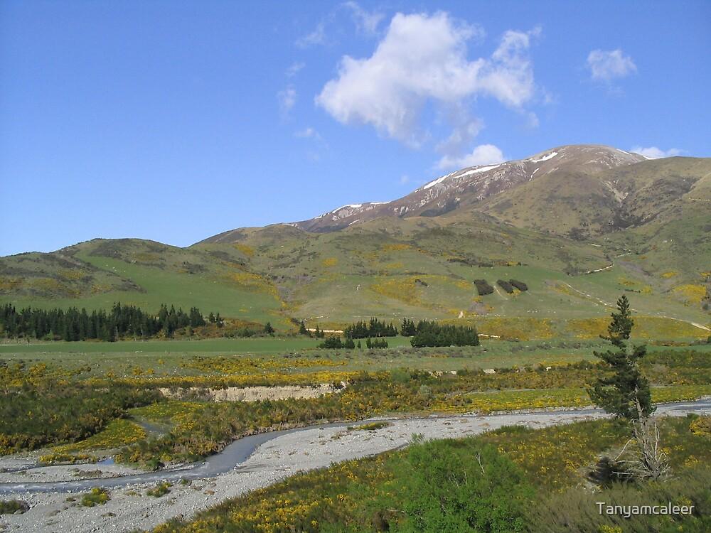 Arthurs Pass, New Zealand by Tanyamcaleer