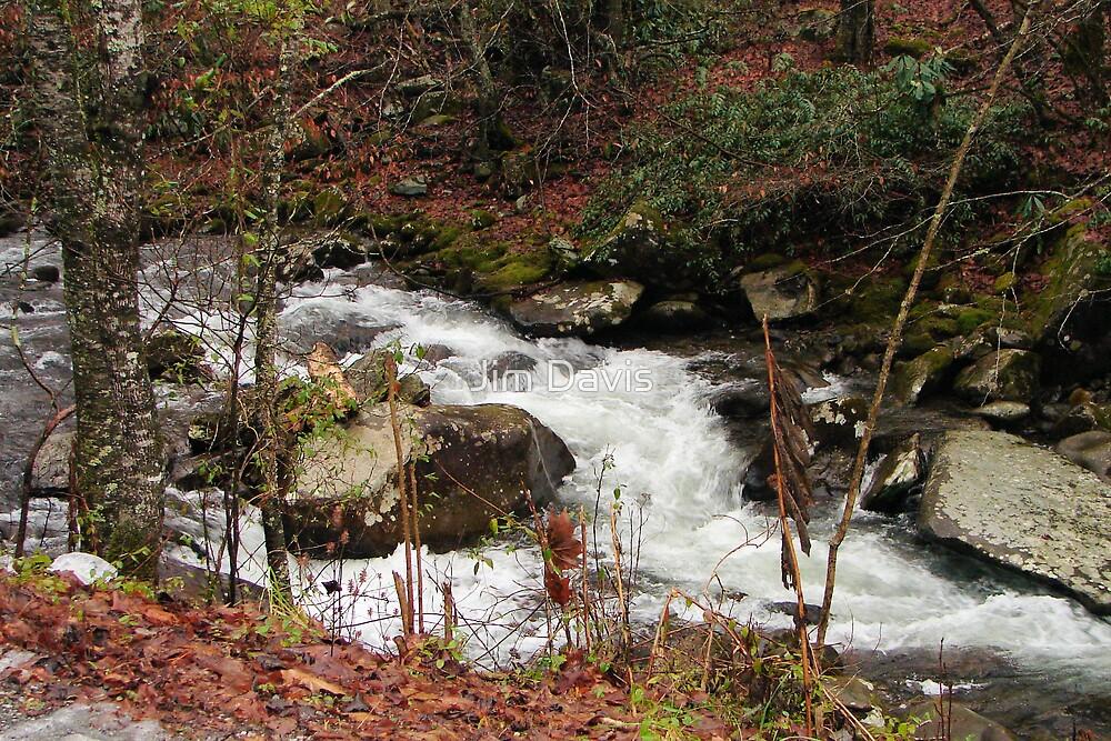 Flowing Water by Jim Davis