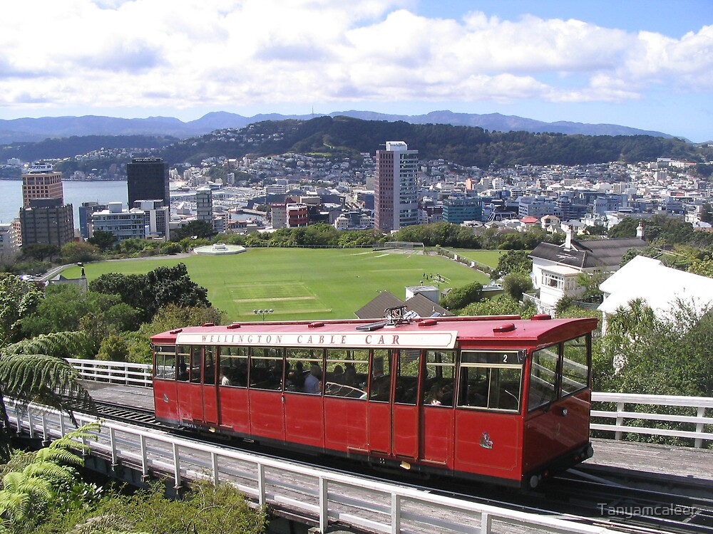 Wellington, New Zealand by Tanyamcaleer
