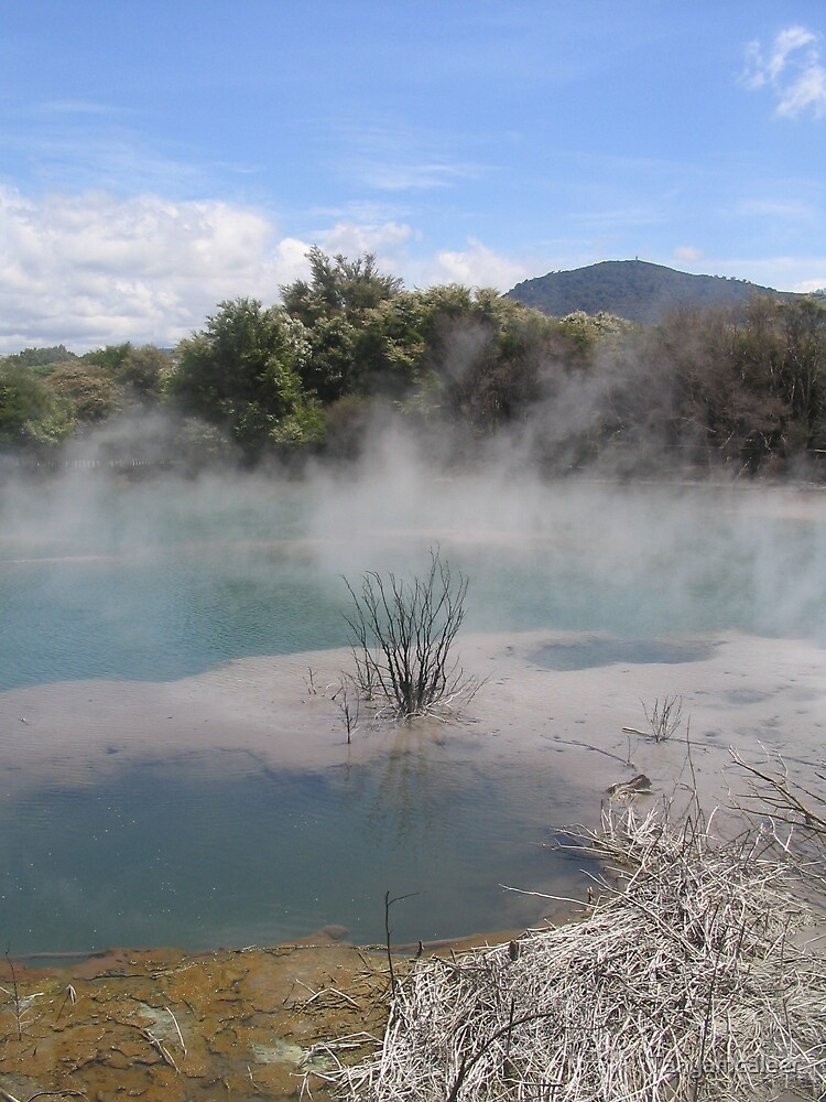 Rotoroa Hot Springs, New Zealand by Tanyamcaleer