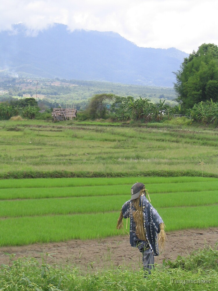 Scarecrow, Pai, Thailand by Tanyamcaleer