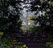 Steps To Exploration by mhphotographyuk
