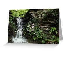 Rocks and Ferns Greeting Card