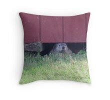 summer days of a groundhog Throw Pillow