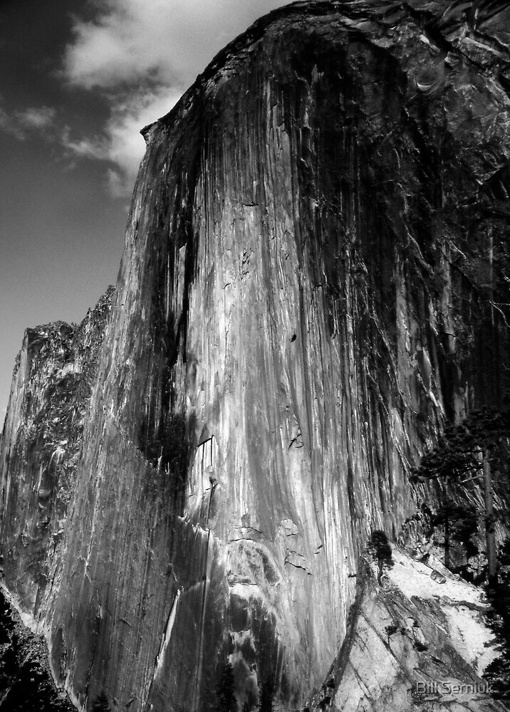 Half Dome by Bill Serniuk
