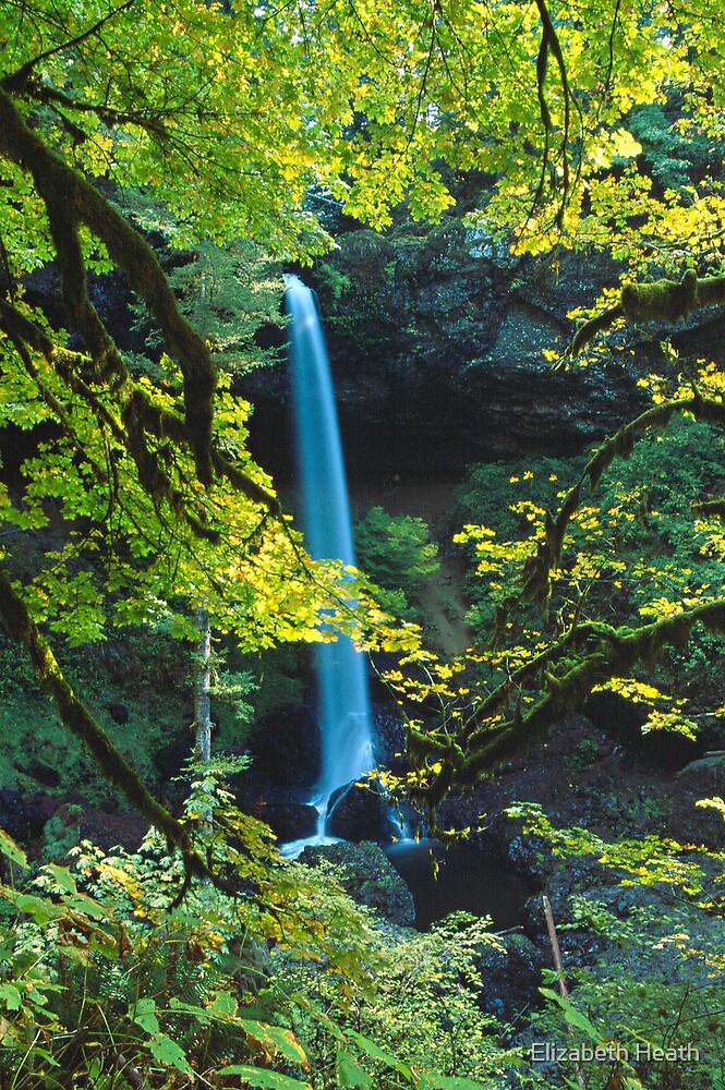 Silver Falls by Elizabeth Heath