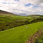 Anascaul Valley, Dingle Peninsula, Ireland by ThomasMaher