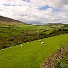 Anascaul Valley, Dingle Peninsula, Ireland by ThomasMaher