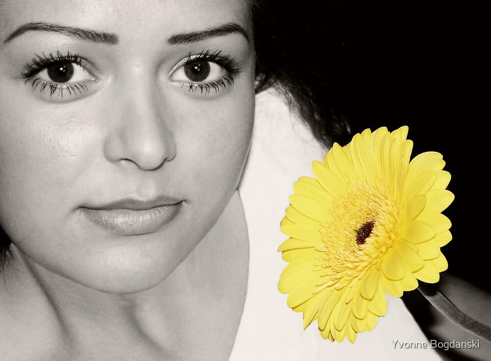 Spring by Yvonne Bogdanski
