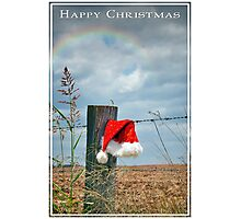 Bush Christmas Photographic Print