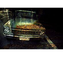 carleaves Photographic Print