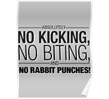 Absolutely NO BITING, NO KICKING, and no RABBIT PUNCHES!!! Poster
