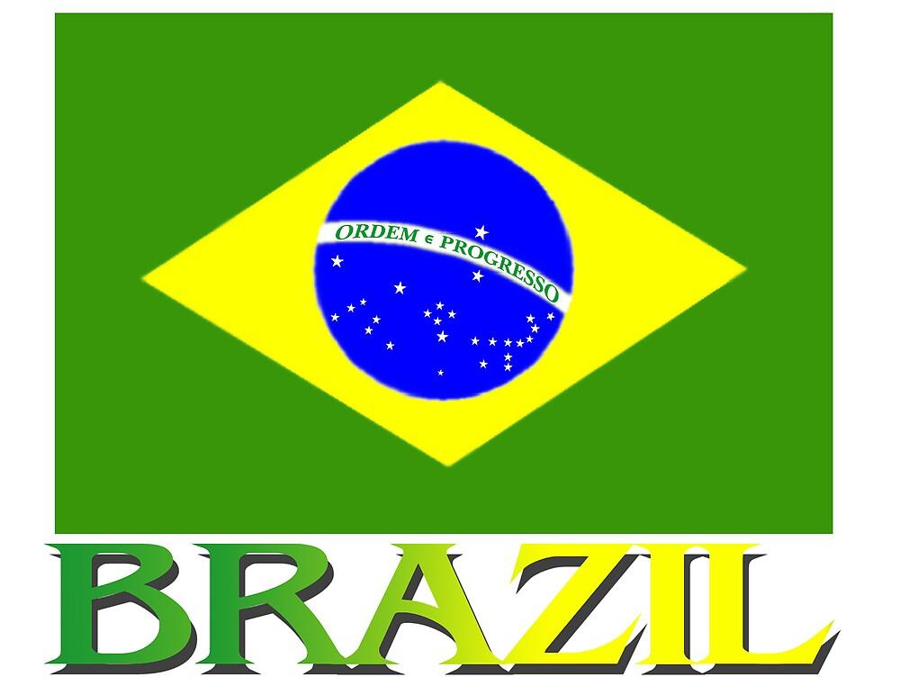 Brazilian Flag by kurtmarcelle