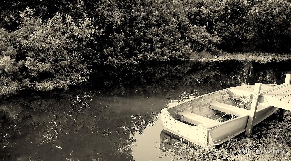 Lake Scene by Matthias Ceconi