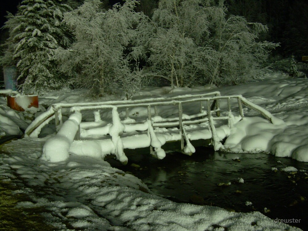 Frozen bridge by drewster