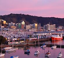 Wellington by Night by euee